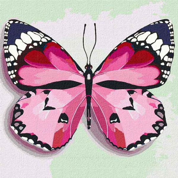 """Set for painting by numbers. """"Pink butterfly"""" 25 * 25cm"""